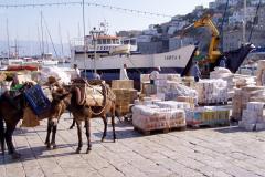 Auf der Insel werden Lasten von Eseln transportiert.